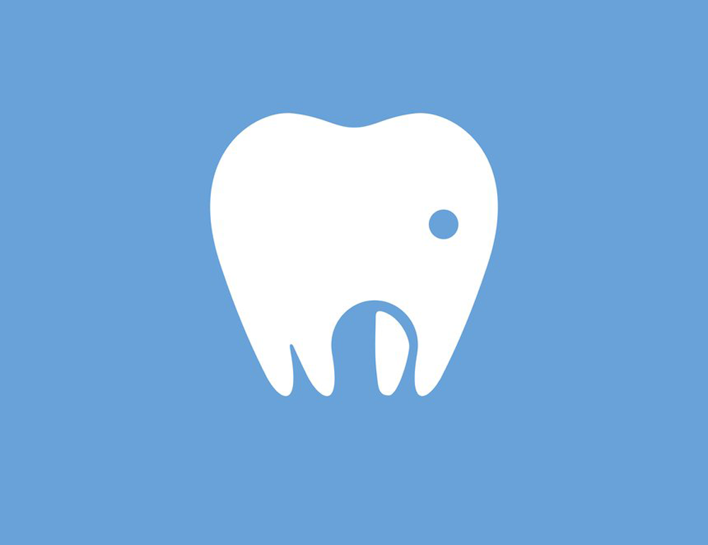 Cape Animal Dentistry Service